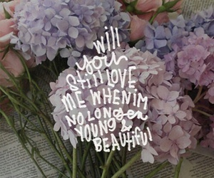 quote, beautiful, and lana del rey image