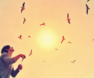 birds, vintage, and perfect image