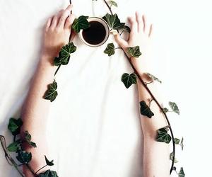 coffee, life, and minimal image
