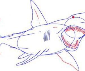 art, drawing, and how to draw shark image