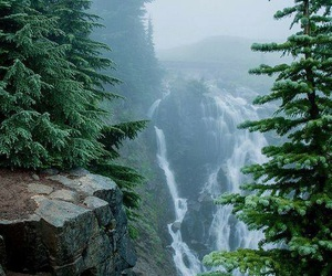 nature, waterfall, and forest image