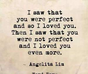 quote, perfect, and love image