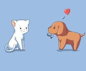 cat, love, and dog image