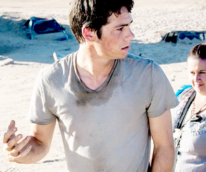 dylan o'brien, maze runner, and thomas image