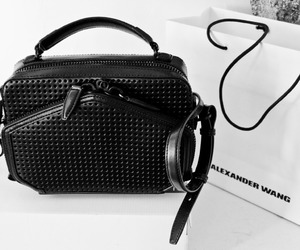 fashion, bag, and alexander wang image