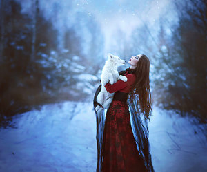 snow, wolf, and winter image