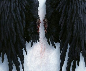 wings, angel, and black image
