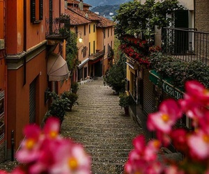 flowers, italy, and beautiful image