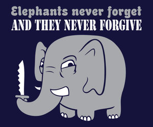 elephant and funny image