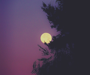 night, purple, and sky image