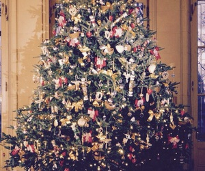 christmas and christmas tree image