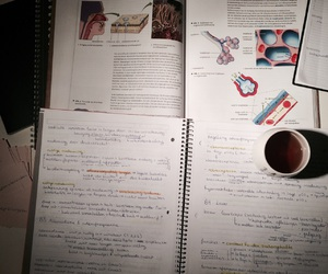 biology, finals, and study image