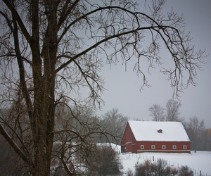 2010, cold, and country image