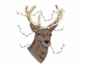 deer, draw, and ᵀᴿᴬᴺˢᴾᴬᴿᴱᴺᵀˢ image
