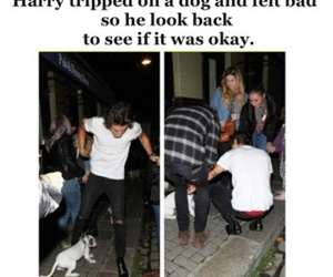 Harry Styles, boy, and dog image