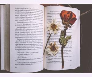 books, hush hush, and flowers image