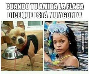 gorda, chiste, and español image