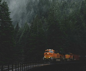forest, train, and travel image