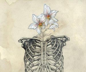 flowers, art, and skeleton image