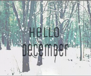 christmas, december, and hello image