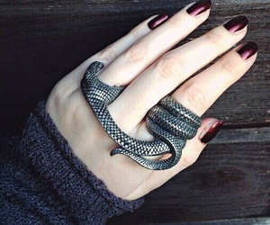 ring, snake, and grunge image