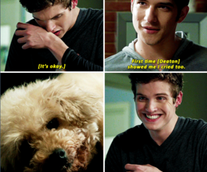 adorable, teen wolf, and tw image