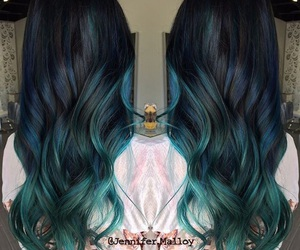 hair, hairstyles, and hair colors image
