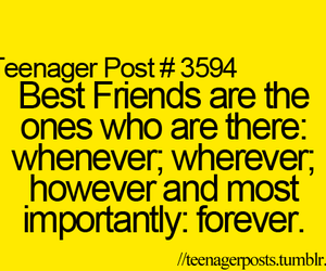 bff, true, and best friends image