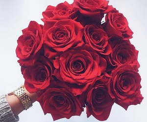 flowers, roses, and beautiful image