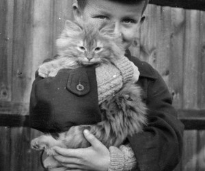 cat, boy, and girl image