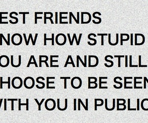 best friends, stupid, and quote image