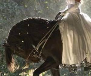 horse, princess, and dress image