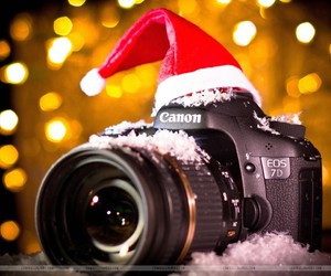 canon 7d christmas winter image