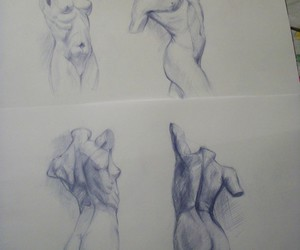 anatomy, body, and sketch image