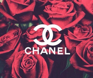 chanel, rose, and wallpaper image