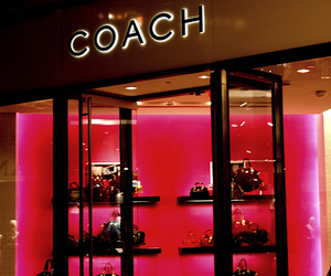 fashion, coach, and pink image
