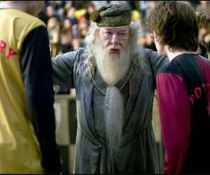 cedric diggory, dumbledore, and harry potter image