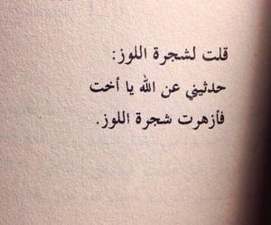 الله, كلمات, and ﻋﺮﺑﻲ image