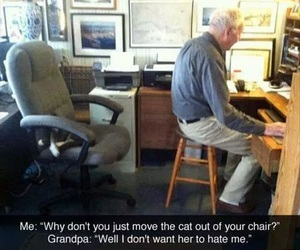 funny, cat, and grandpa image