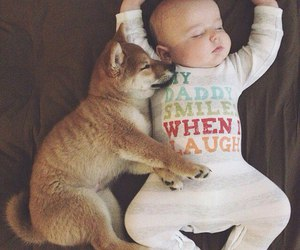 baby, child, and dog image