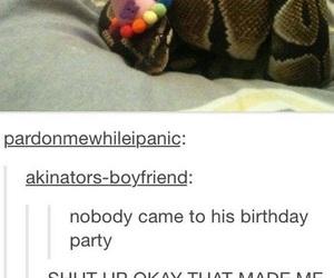 tumblr, funny, and snake image