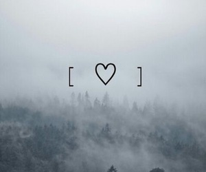 fog, forest, and heart image