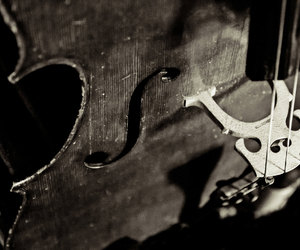 black and white, cello, and music image