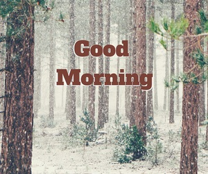 day, happy, and morning image