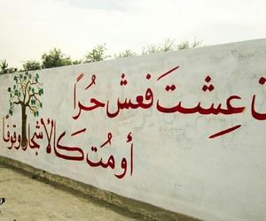 arabic, says, and ﻋﺮﺑﻲ image