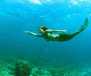 mermaid, ocean, and underwater image