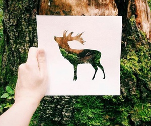 deer, nature, and art image