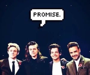 promise, 1d, and one directione image