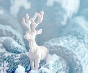 blue, ice, and reindeer image