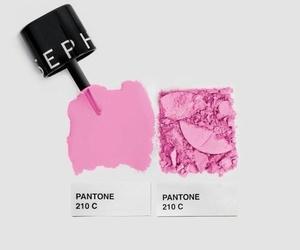 pink and pantone image
